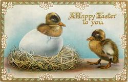 A HAPPY EASTER TO YOU  one duckling leaving the egg, another standing by