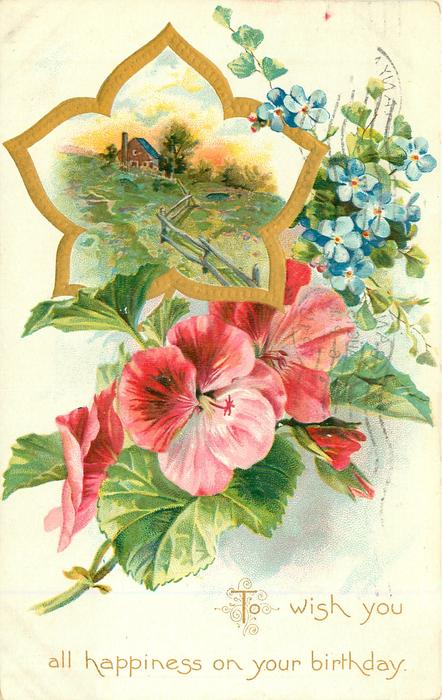 TO WISH YOU ALL HAPPINESS ON YOUR BIRTHDAY pink geraniums & forget-me-nots below rural gilt inset above