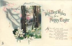 WITH BEST WISHES FOR A HAPPY EASTER  woods, white violets