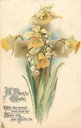A PEACEFUL EASTER  daffodils