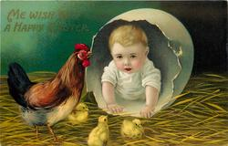 ME WISH 'OO A HAPPY EASTER  baby in enormous egg, hen & three chicks observe