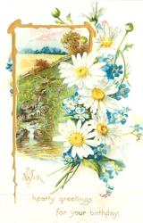 WITH HEARTY GREETINGS FOR YOUR BIRTHDAY white yellow centred daisies, forget-me-nots right, rural inset gilt left