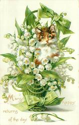 MANY HAPPY RETURNS OF THE DAY  cat peeks out from large basket of lilies-of-the-valley