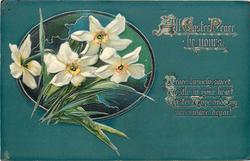 ALL EASTER PEACE BE YOURS  narcissi, deep green background