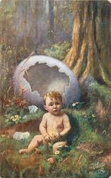newly hatched boy from large purple egg, country scene, large tree right, primroses