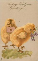 LOVING NEW YEAR GREETINGS  two chicks one carries violets, the other an envelope