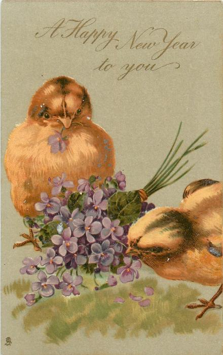 A HAPPY NEW YEAR TO YOU  two chicks peck at bunch of violets between them