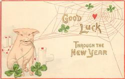 GOOD LUCK THROUGH THE NEW YEAR  pig sits holding spider's web, 4 leaf clovers
