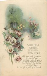 WITH BEST WISHES FOR A HAPPY NEW YEAR   path between flowers