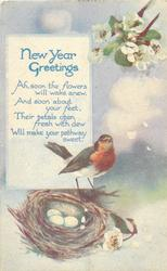 NEW YEAR GREETINGS  robin & nest