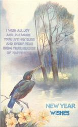 NEW YEAR WISHES  kingfisher, trees, stream