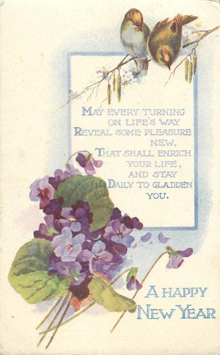 A HAPPY NEW  YEAR  two birds, violets