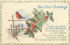 NEW YEAR GREETINGS  holly & robin