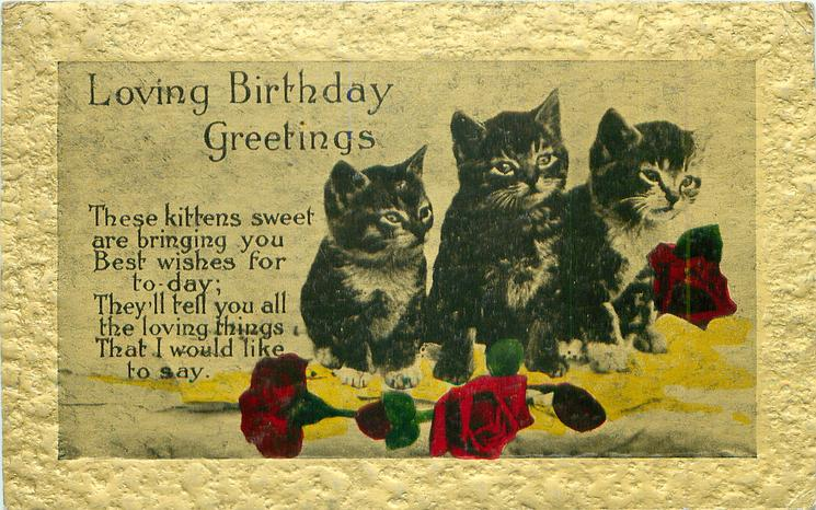 LOVING BIRTHDAY GREETINGS  three kittens, roses