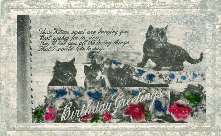 BIRTHDAY GREETINGS  four kittens