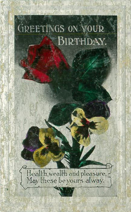 GREETINGS ON YOUR BIRTHDAY  red rose & yellow/purple pansies