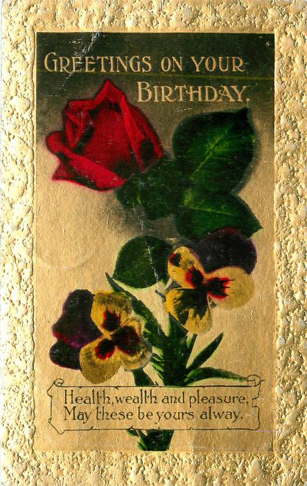 GREETINGS ON YOUR BIRTHDAY,  red rose & pansies