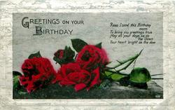 GREETINGS ON YOUR BIRTHDAY  red roses