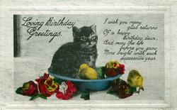 LOVING BIRTHDAY GREETINGS  kitten & chicks