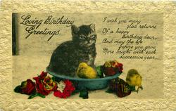LOVING BIRTHDAY GREETINGS  kitten, chicks & flowers