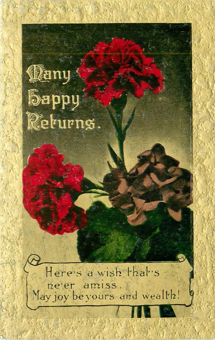 MANY HAPPY RETURNS carnations & violets