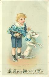 A HAPPY BIRTHDAY TO YOU  boy has hat-full of forget-me-nots, poodle begs with valentine