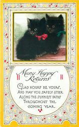 MANY HAPPY RETURNS oblong inset  two black kittens