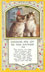 SUNSHINE AND JOY ON YOUR BIRTHDAY inset  two tabby kittens with white fronts