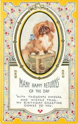 MANY HAPPY RETURNS OF THE DAY oval inset pekingese dog