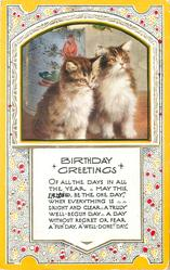 BIRTHDAY GREETINGS inset  two tabby kittens with white fronts
