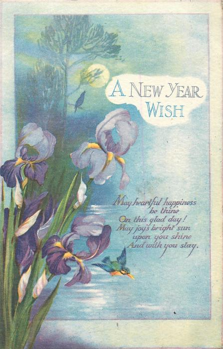 A NEW YEAR WISH  iris, kingfisher over water