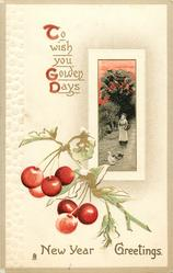 NEW YEAR GREETINGS  inset rural scene, cherries below