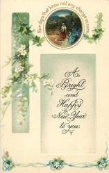 A BRIGHT AND HAPPY NEW YEAR TO YOU  rural inset, ivy & white blossom
