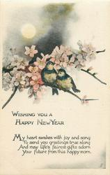 WISHING YOU A HAPPY NEW YEAR  two birds on pink blossom tree