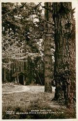 SHADY SHELTER. GURNARD PINES HOLIDAY CAMP, I.O.W.