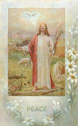 PEACE  Jesus in a field with sheep