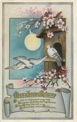 MANY HAPPY RETURNS  pigeons, blossom