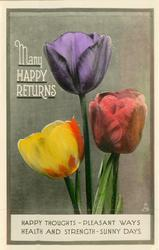 MANY HAPPY RETURNS  three tulips