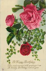 red rose & two pink roses with maidenhair fern