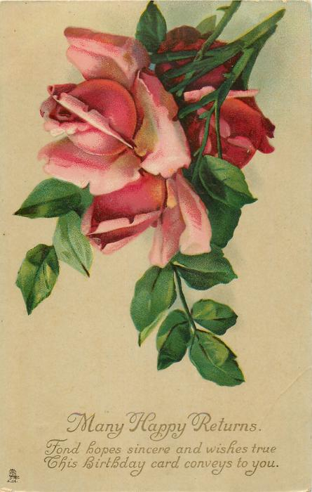 MANY HAPPY RETURNS  two pink & 1 red rose with rose leaves