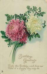 BIRTHDAY GREETINGS  chrysanthemums