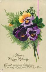 MANY HAPPY RETURNS  pansies right & maidenhair fern left