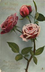 A HAPPY BIRTHDAY  two roses & bud on single stem