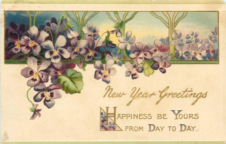 NEW YEAR GREETINGS  violets