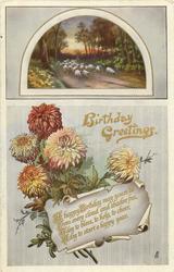 BIRTHDAY GREETINGS  sheep, chrysanthemums