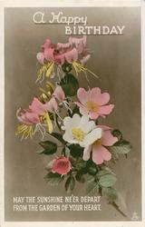 HAPPY BIRTHDAY, A  GOOD HEALTH, GOOD LUCK, AND A RIGHT GOOD TIME  anemones