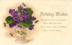 BIRTHDAY WISHES  vase of violets left