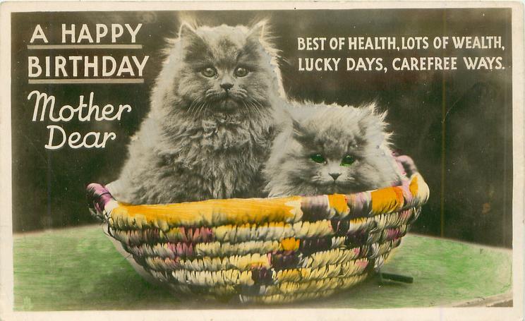 A HAPPY BIRTHDAY MOTHER DEAR two kittens in basket