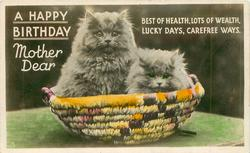 A HAPPY BIRTHDAY MOTHER DEAR two kittens in basket