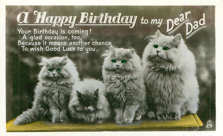 A HAPPY BIRTHDAY TO YOU MY DEAR DAD four white Persian cats